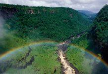 Kaieteur Falls Rainforest, Guyana © Staffan Widstrand / WWF