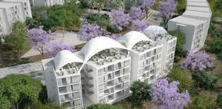 Colline aux Oliviers Social Housing Re-envisioning an olive grove domain into an habitable park : Photo credit © Abderhrrahman Ezzine