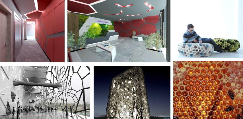 Biomimesis © MANUEL TORRES DESIGN