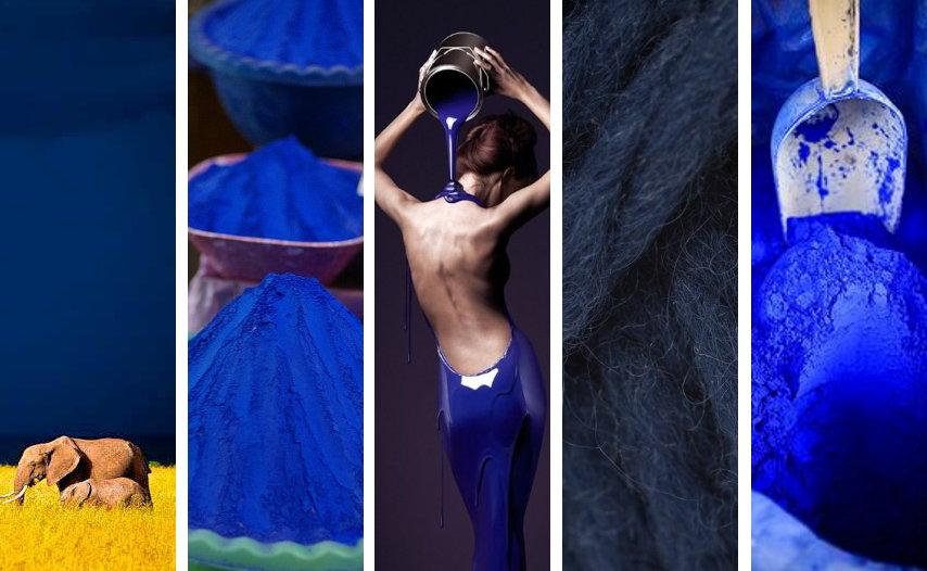 Azul Cobalto © MANUEL TORRES DESIGN