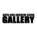 The Anya and Andrew Shiva Gallery