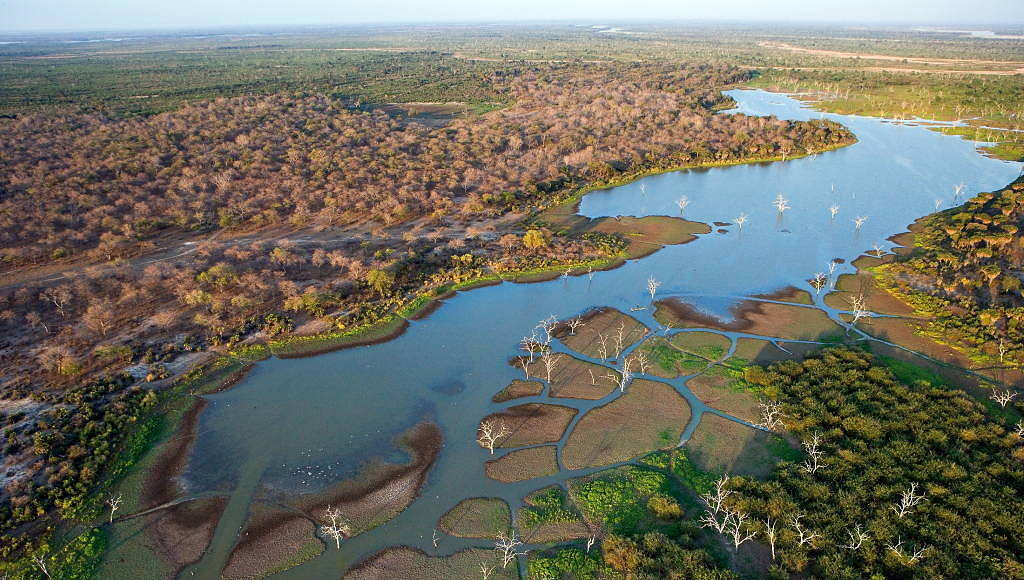 Aerial view of Rufiji River, Selous Game Reserve, Tanzania. The Rufiji River and its tributaries, the Great Ruaha, Kilombero and Luweg Rivers, make up the largest river system in East Africa : Photo © Michael Poliza / WWF
