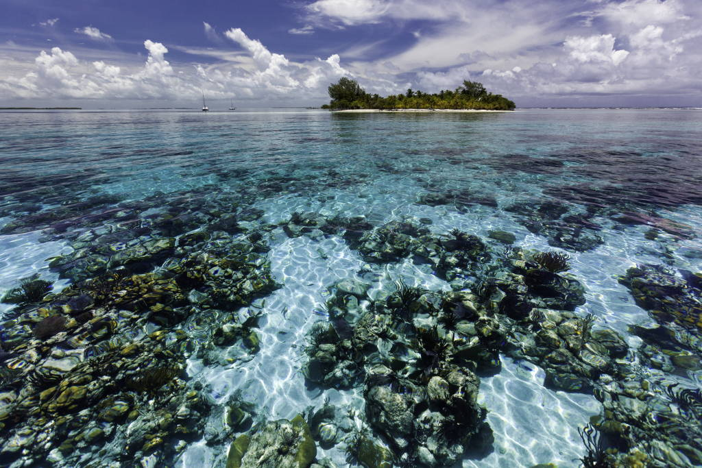 A view of South Water Caye Marine Reserve, one of seven protected areas that make up the Belize Barrier Reef Reserve System World Heritage site : Photo © Antonio Busiello / WWF-US