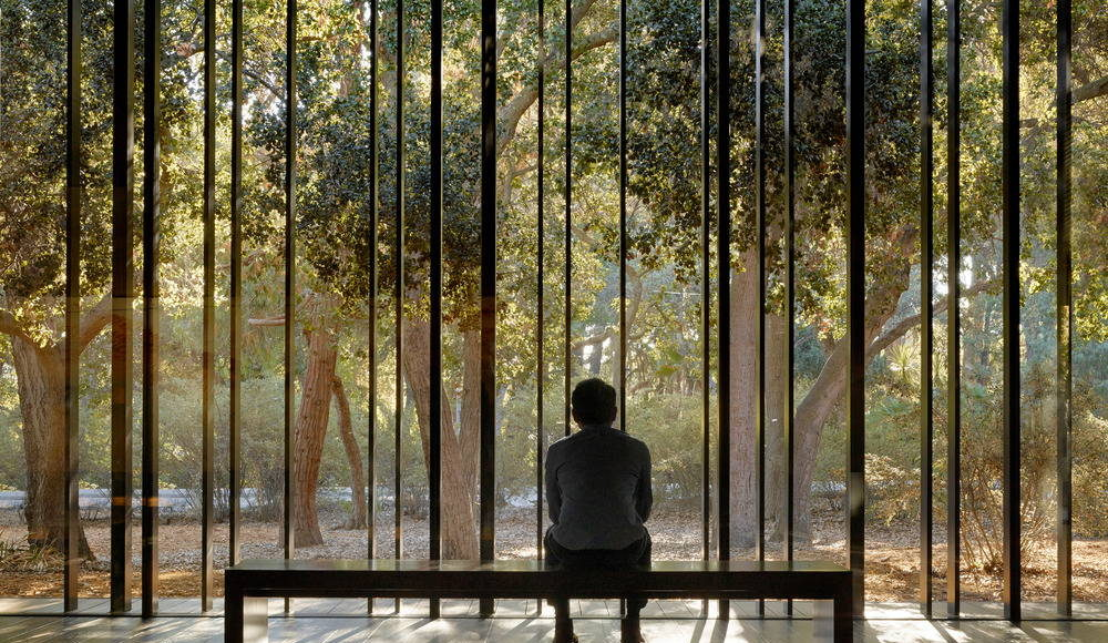The space opens to the oak glade beyond, extending the visitor's experience into the landscape : Photo credit © Matthew MIllman
