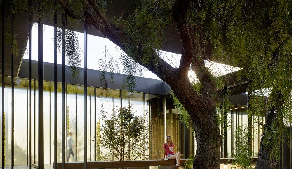 Lifted two feet from the ground with strategically placed benches along its length, the courtyard provides visitors the ability to experience the adjacent oak grove within the protection of the three-sided courtyard : Photo credit © Matthew Millman