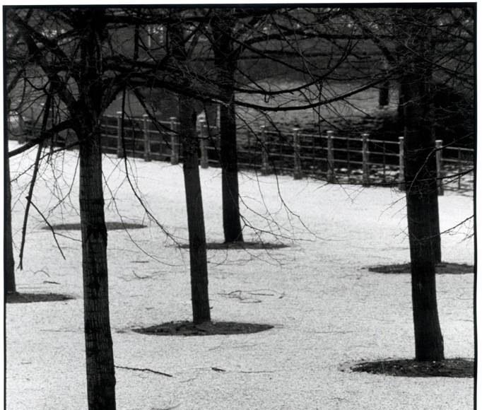 Fotografías Annette y Angela, Berlín, 1982 : Photo © Sybille Bergemann