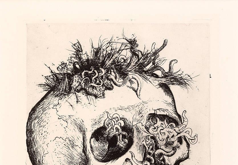Otto Dix, Schädel, 1924, Radierung aus: Der Krieg. Radierwerk VI, 25.7 x 19.5 cm 68 x 53 cm, Sammlung Institut für Auslandsbeziehungen e.V. Stuttgart : Photo © VG Bildkunst Bonn