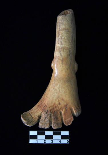 Representación de un pie esculpido en un fémur humano : Foto © Archivo del proyecto DSA-INAH