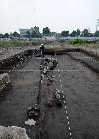 La mayoría de las chinampas estuvieron destinadas al cultivo : Foto © Archivo del proyecto DSA-INAH
