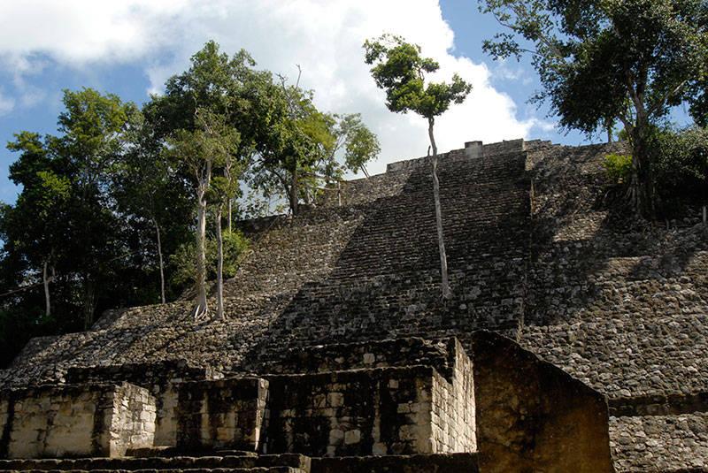 Zona Arqueológica de Calakmul, Campeche : Foto © Julio Bronimann INAH