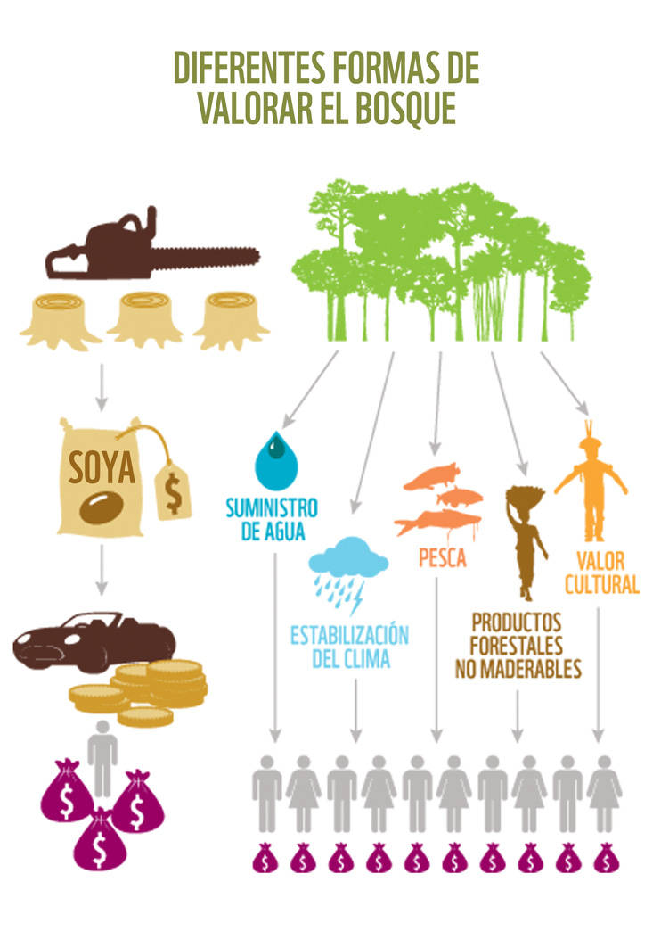 WWF Living Amazon Report 2016 © WWF – World Wide Fund For Nature