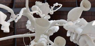 Siphonophora del artista Thomas Glassford en el Museo Universitario del Chopo : Fotografía © Museo Universitario del Chopo - © Cultura UNAM