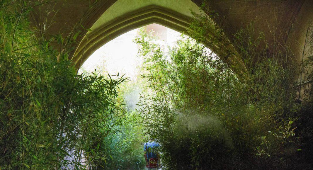 Thin Green by Belle Ville Atelier d'Architecture - Ilan Bitoun, Vincent Imfeld, Alexandre Ferron, Anthony Le Page et Lucile Nicosia : Photo credit © Paul KOZLOWSKI © www.photoarchitecture.com