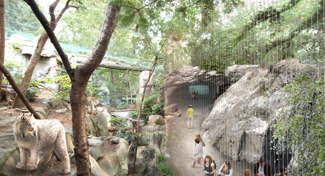 Montreal Biodome Science Museum Laurentian Maple Forest Ecosystem : Photo credit © KANVA