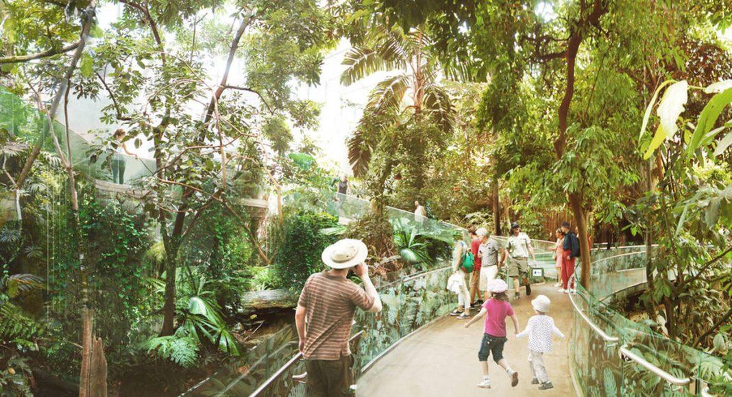 Montreal Biodome Science Museum Tropical Rainforest Ecosystem : Photo credit © KANVA