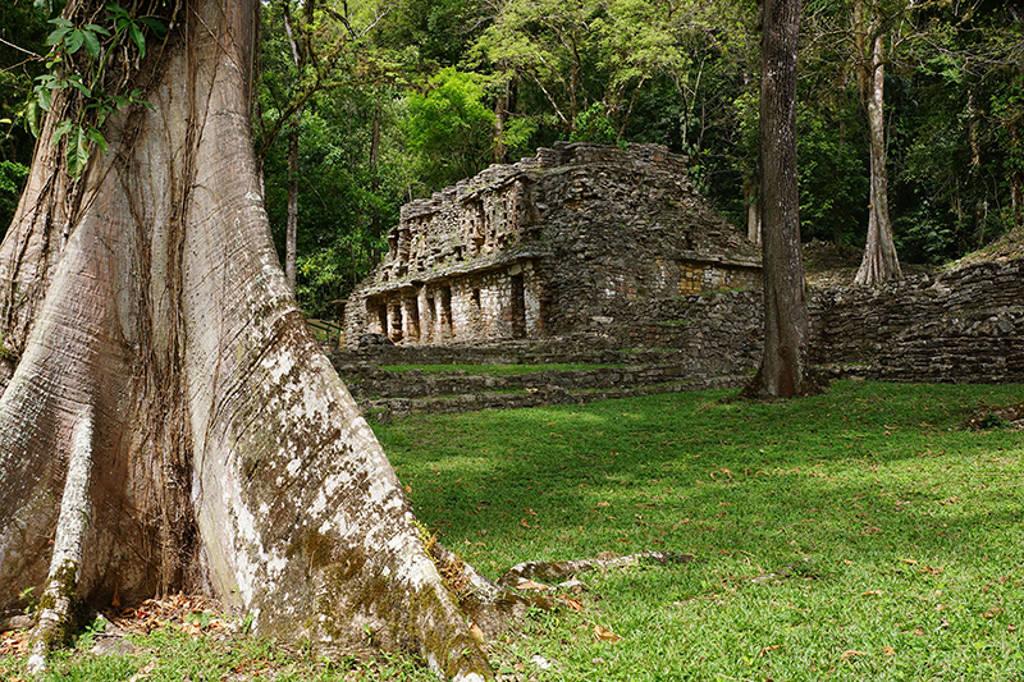 Zona Arqueológica de Yaxchilán : Foto © INAH