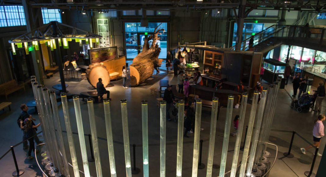 La Galería East Gallery vista desde arriba con la exposición Tidal Memory como fondo, Algae Chandelier a la izquierda y el Tree Experience en el centro : Image by Gayle Laird © Exploratorium, www.exploratorium.edu