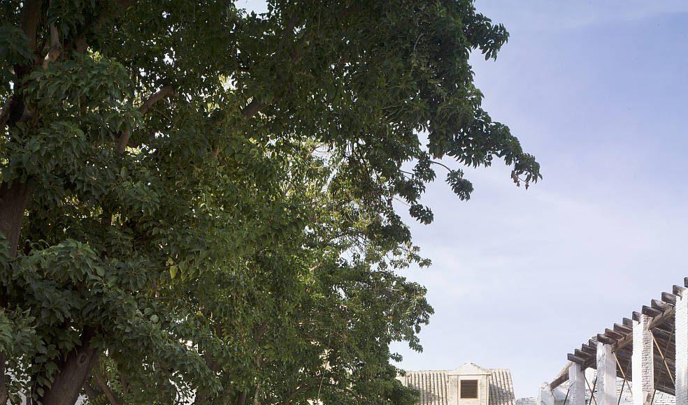 Consolidaciones instaladas. Antiguo convento de Santa María de los Reyes de Sevilla. Consolidación estructural de inmuebles de interés arquitectónico y adecuación de espacios libres. José Morales, Sara de Giles. España : Photo © Jesús Granada