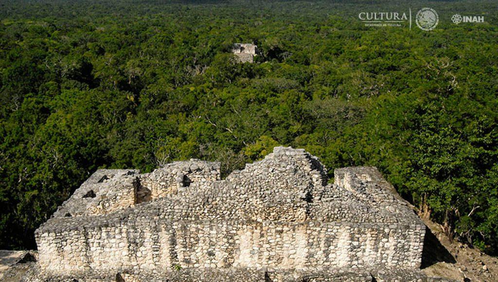 Vista panorámica de la Zona Arqueológica de Calakmul : Foto © Julio Bronimann. INAH