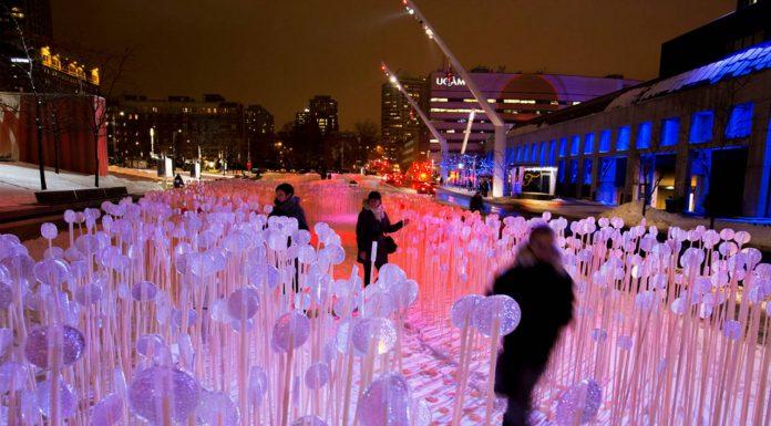 Entre les rangs, Place des Festivals, Quartier des Spectacles, Montreal : Photo credit © Martine Doyon
