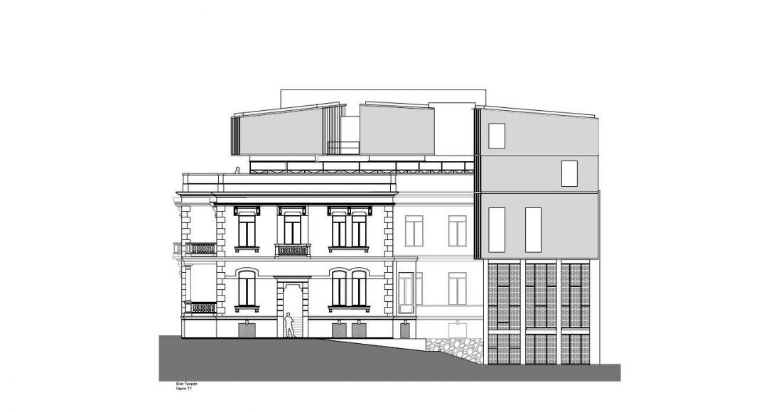 Havre 77 Fachada hacia el Patio por el estudio Francisco Pardo Arquitecto : Dibujo © Francisco Pardo Arquitecto