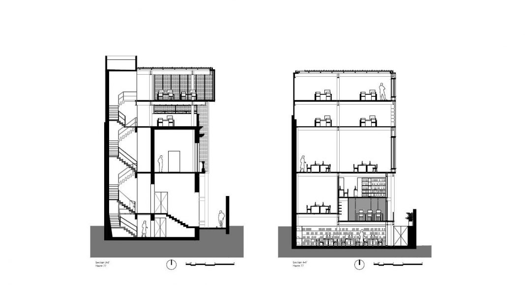 Havre 77 Cortes Transversales por el estudio Francisco Pardo Arquitecto : Dibujo © Francisco Pardo Arquitecto