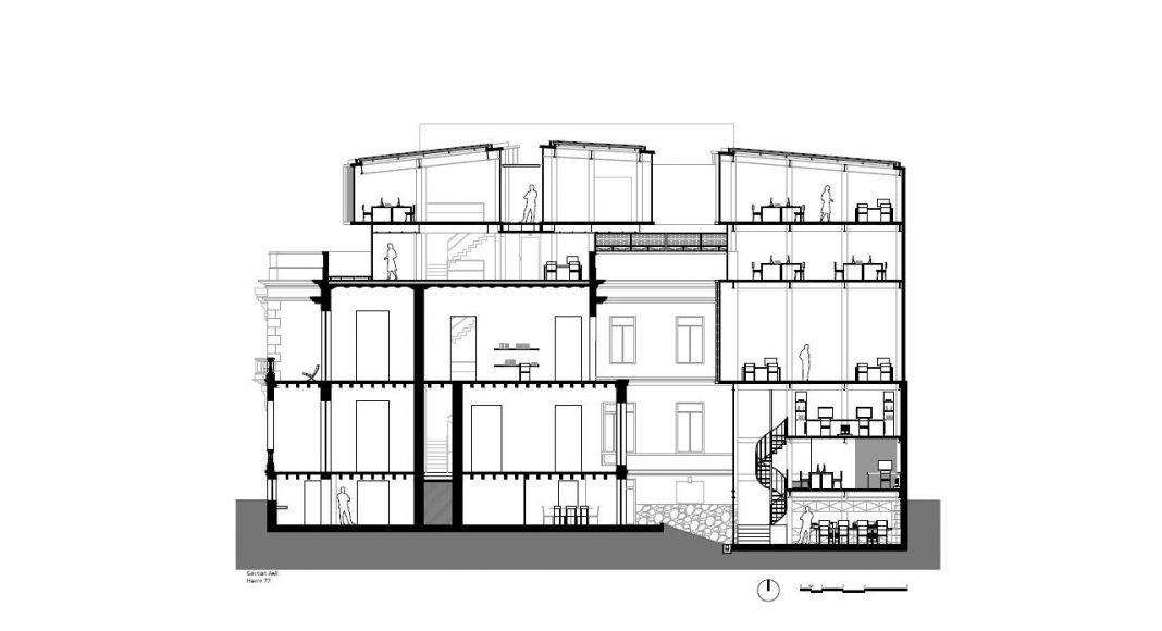Havre 77 Corte Longitudinal por el estudio Francisco Pardo Arquitecto : Dibujo © Francisco Pardo Arquitecto