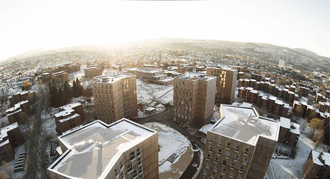 Trondheim, NO Moholt 50I50 - Timber Towers : Photo © Thomas Bekkavik