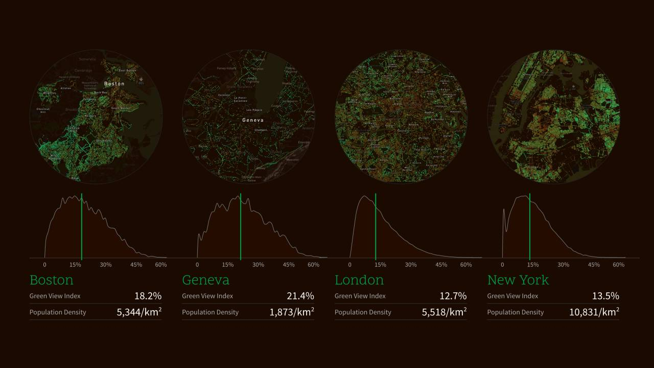 Treepedia Green View Index Comparison of Cities : Photo © MIT Senseable City Lab