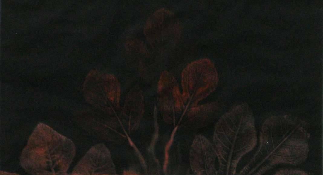 Leonora Carrington, The Fig Mother, 1947, decollage, frottage, l+ípiz y pastel sobre papel, 61 x 46 cm : Fotografía © Leonora Carrington