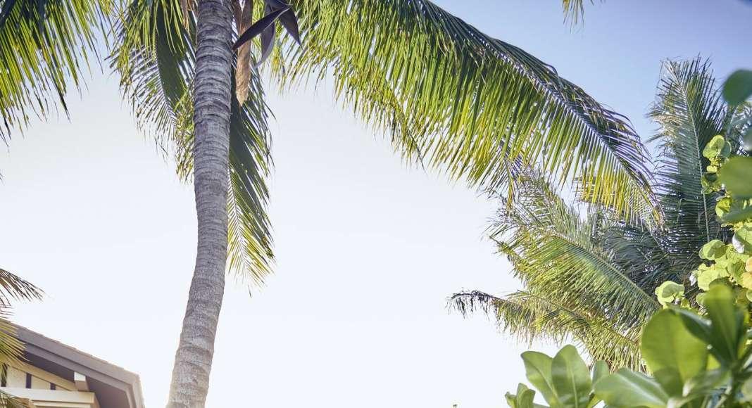Mayakoba Resort Experience Summer 2017 : Fotografía © Mayakoba Resort