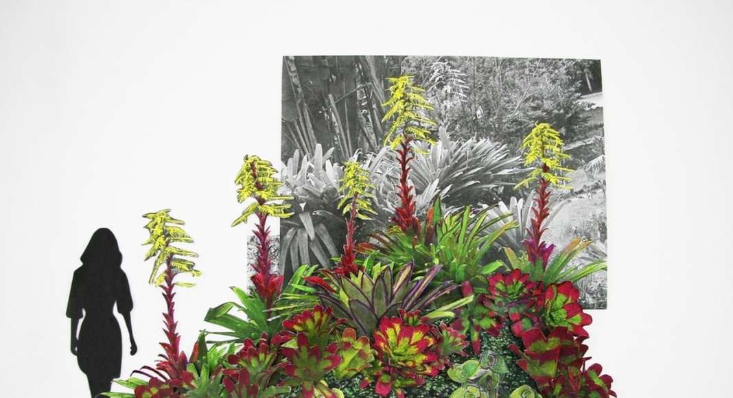 3D collage planting study for the topographic gardens : Photo credit courtesy of © Balmori Associates